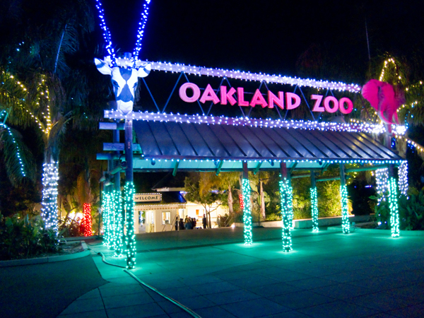oakland zoo, zoolights entrance