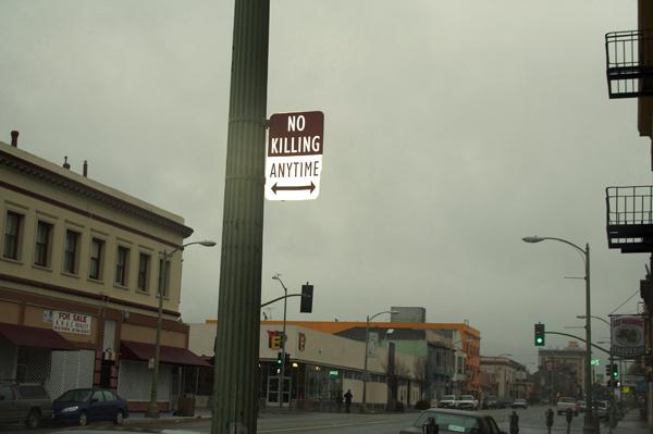 oakland graffiti, no killing signs, no killing anytime