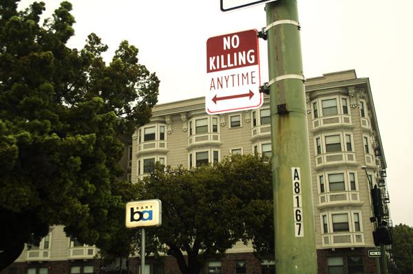 oakland graffiti, no killing signs, modified parking signs
