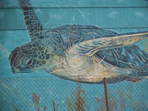 oakland mural art, emergent sea, sea turtle on 880, giant sea turtle mural