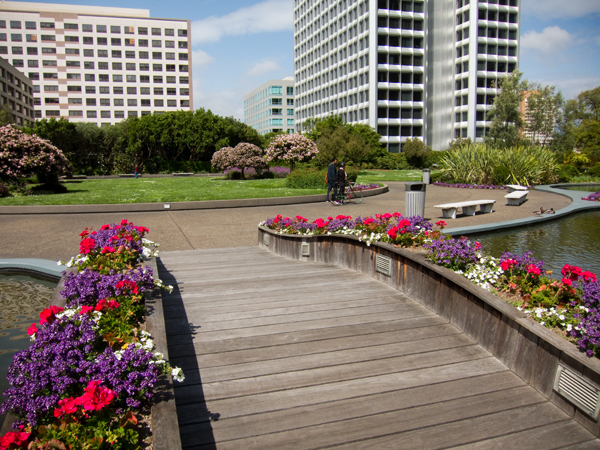 One Of The Largest Roof Gardens In The World Oaktown