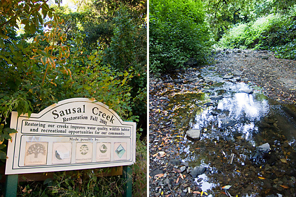 dimond park, sausal creek trail