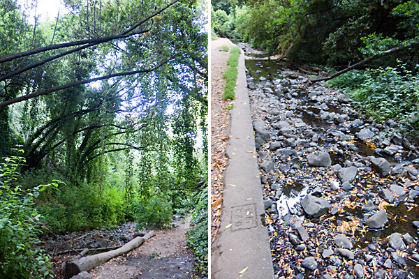 Sausal Creek, sausal creek hiking trails