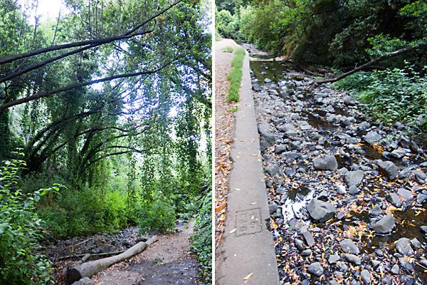 Sausal Creek, sausal creek hiking trails