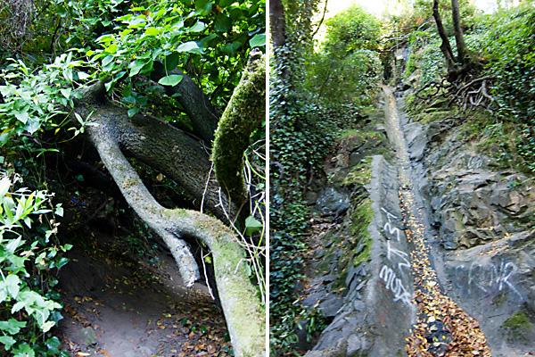 sausal creek hiking, sausal creek culvert