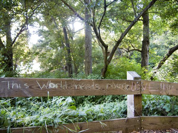 graffiti art in sausal creek