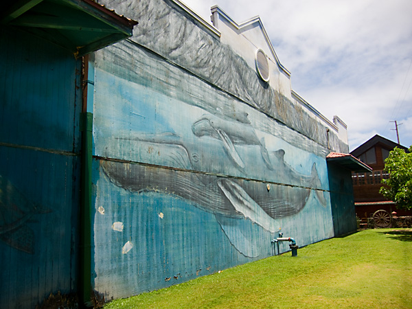 Kauai Humpback Whale Mural, Time for Conservation, humpback whale