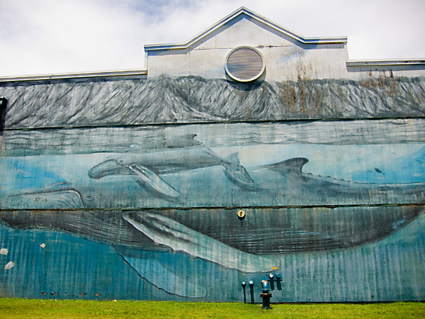 Whaling Wall XXVIII, art of wyland, kauai village murals