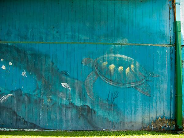 Wyland Whaling Wall, kauai village whaling wall, art of wyland