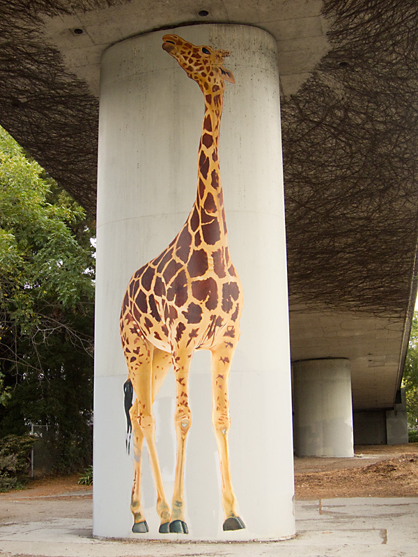 giraffes under 580, freeway giraffe paintings, oakland public art on freeways
