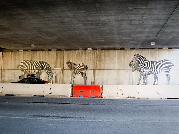 580 Freeway Murals, Zebras Mural, Animurals, Dan Fontes