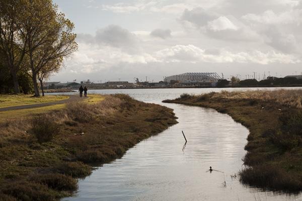 east bay parks, east bay hiking trails, east bay wetland restoration