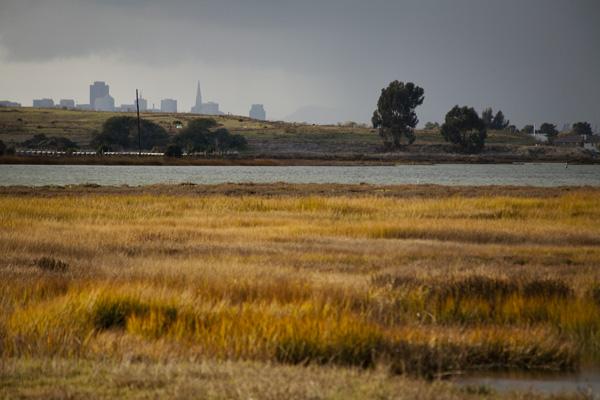 East Bay Shoreline Park, East Bay Wetlands Restoration, Oakland Parks