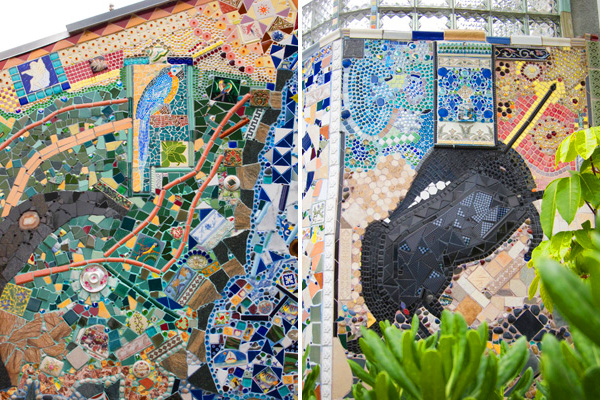 parrot mosaic, narwhal mosaic